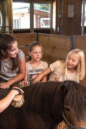 Pferdeerlebnis im Wilden Westen