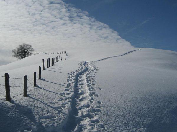 Schneeschuhtrail auf der First bei Heiligkreuz