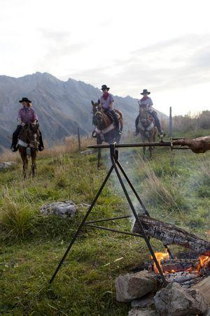 Stucki Pferde-Trekking