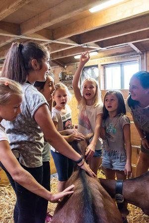 Tierisches Paradies – Visite bei den Bauernhoftieren