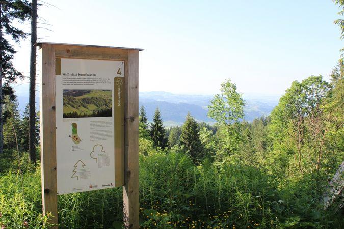 Schutzwaldpfad Heiligkreuz