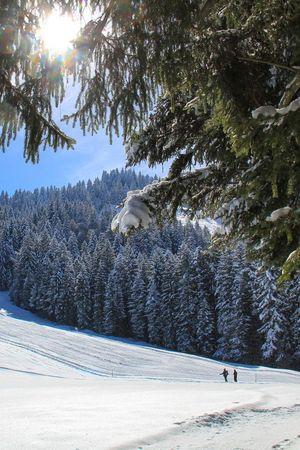 Winterwanderung Heiligkreuz - Kleine First - Bergrestaurant First