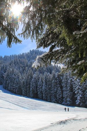 Winterwanderung Heiligkreuz - Kleine First - Bergrestaurant First