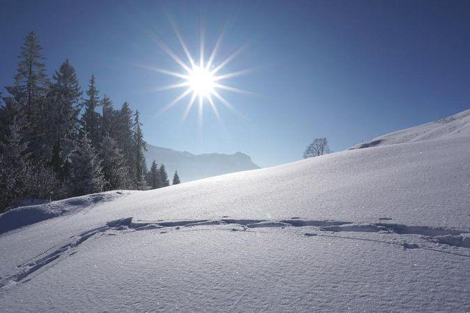 Schneeschuhtrail Rundweg Marbachegg
