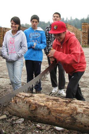 Projektwoche Holz(k)reise