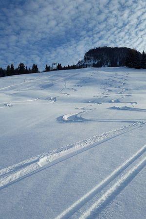 Skigebiet Gfellen