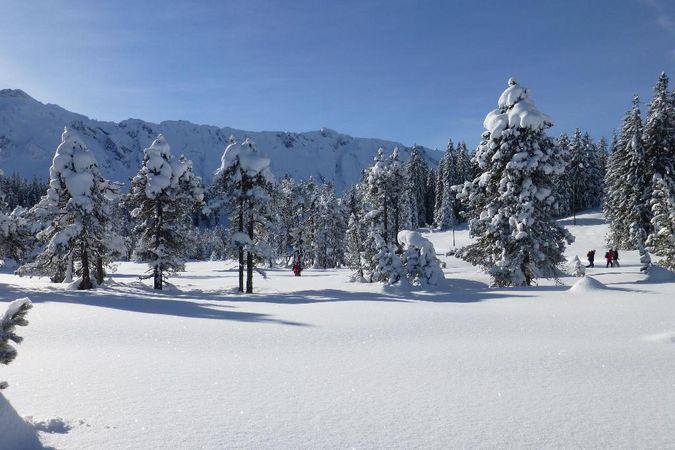 Schneeschuhtrail Salwideli - Laubersmad - Salwideli in Sörenberg