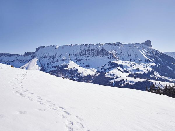 Schneeschuhtrail Marbachegg-Marbach