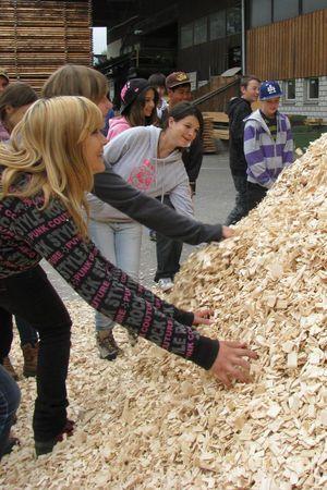 Exkursion «Die Vielfalt von Holz entdecken»