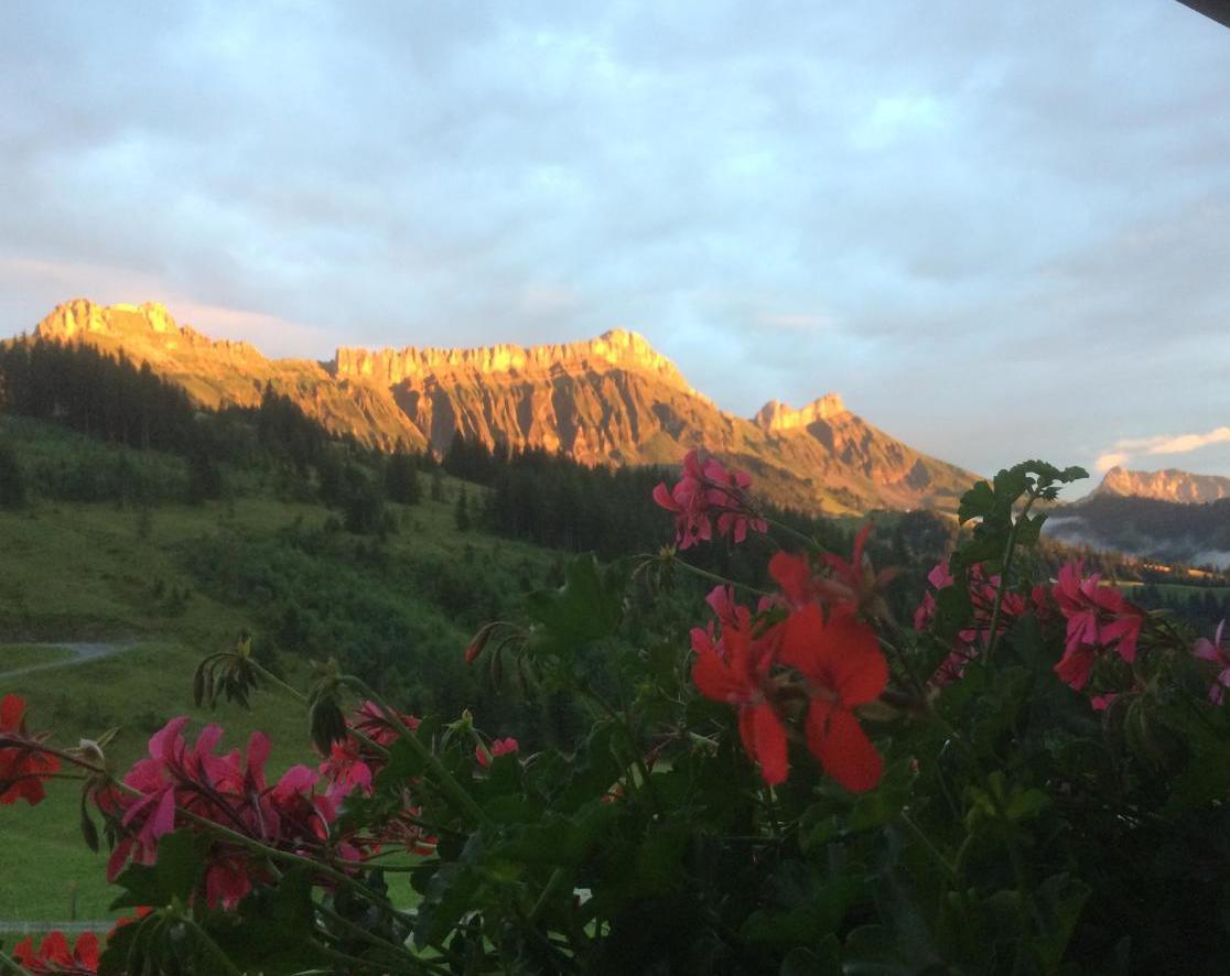 Alphütte Sammligen Hilfernpass