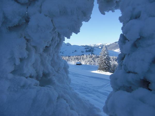 Schneeschuhtrail Schönebode - Blattenegg - Salwideli in Sörenberg