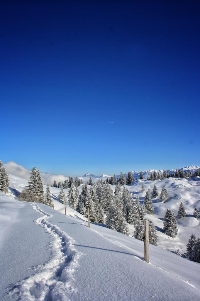 Rundwanderung Glaubenbielenpass in Sörenberg